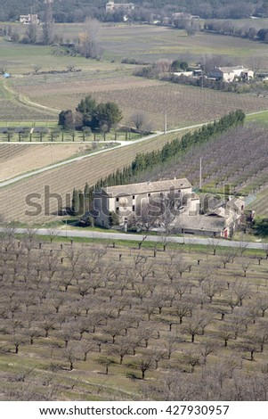 Vineyard outside Menerbes Village, Provence, France, Europe - stock photo