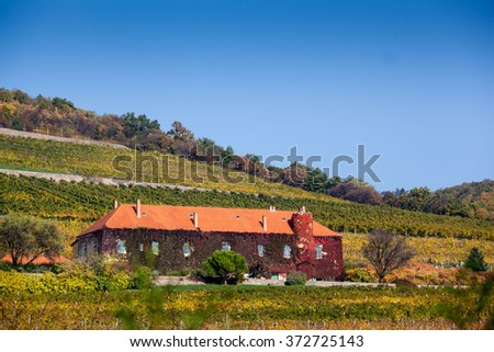 Vineyard with building in Pecs, hungary - stock photo