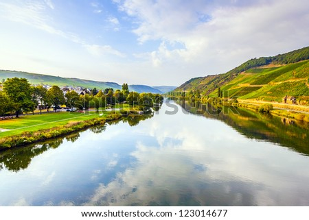 vineyards at the hills of the romantic river Moselle edge in summer with fresh grapes and reflection in the river - stock photo