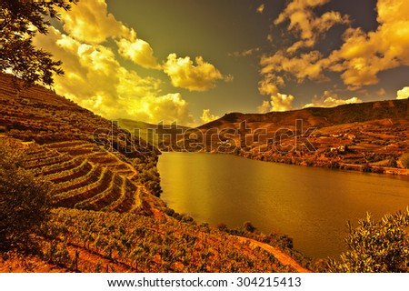 Vineyards in the Valley of the River Douro, Portugal, at Sunset - stock photo