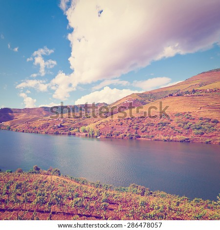 Vineyards in the Valley of the River Douro, Portugal, Instagram Effect - stock photo