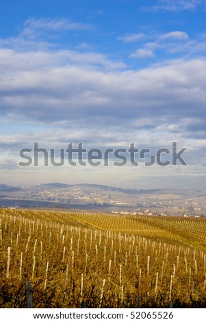vineyards of Pouilly-Fuisse region, Burgundy, France - stock photo