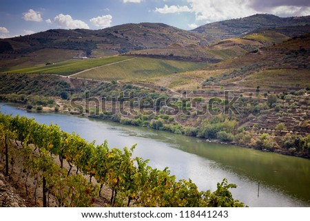 Vineyards of the Douro Valley, Porto, Portugal - stock photo