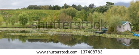 Vineyards of wine estate in Stellenbosch, with a artifiial pond in the foreground. Stellenbosch is the - stock photo