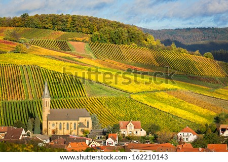 Vineyards with autumn colors, Pfalz, Germany - stock photo