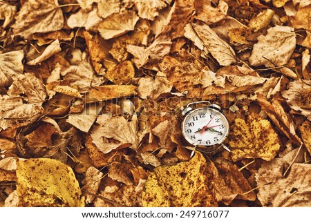 Vintage alarm clock in dry autumn leaves, Passing of time and season change concept. Selective focus. - stock photo