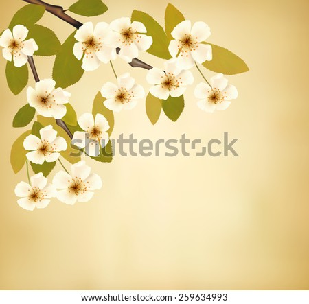 Vintage background with blossoming tree brunch and white flowers.  - stock photo