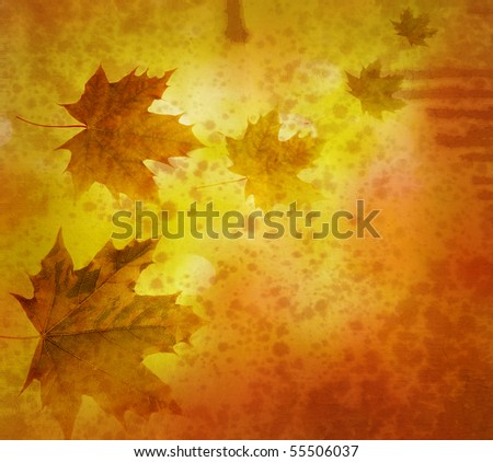 vintage background with maple leaves - stock photo