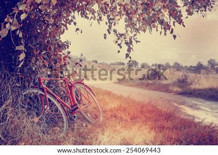 Vintage bicycle waiting near tree - stock photo