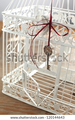 Vintage bird cage with open door and key - stock photo