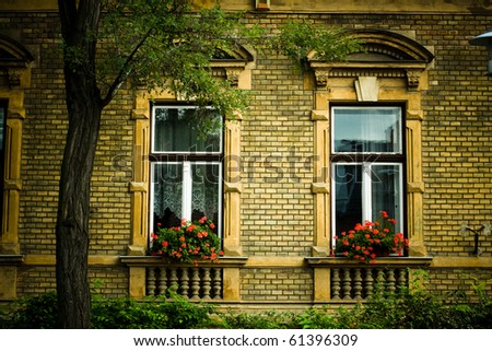 vintage building detail with red flowers - stock photo