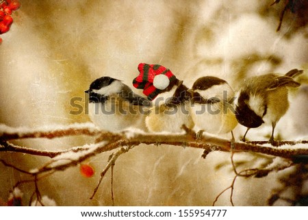 Vintage Christmas card with four adorable chickadees in the snow with copy space.  - stock photo