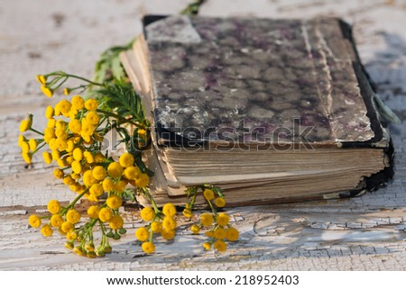vintage closed book on wood desk with Tanacetum vulgare - stock photo