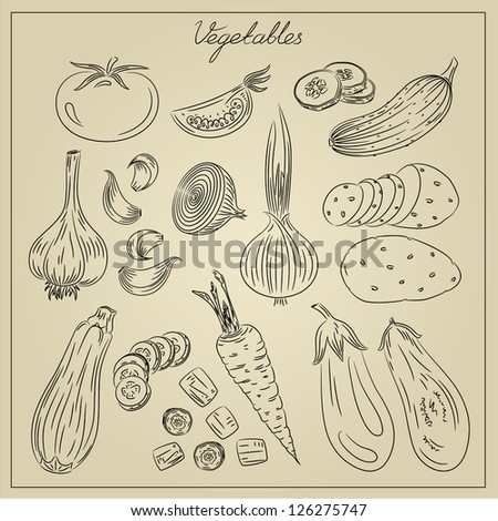 Vintage doodles of culinary vegetables - stock photo