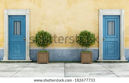 Vintage facade with two blue doors and plants in a wooden pot - rendering - stock photo