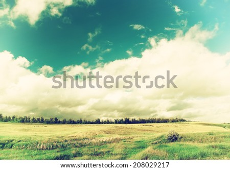 vintage field of grass and trees on horizon with cloudy sky,  natural background with instagram effect - stock photo