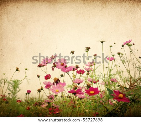 vintage flower paper background - stock photo