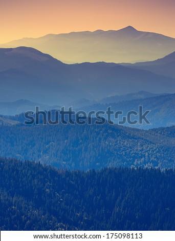 Vintage foggy mountain valley - stock photo