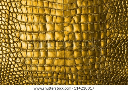 Vintage Gold Crocodile Belly Skin Texture Background. - stock photo