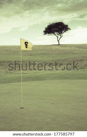 vintage golf field - stock photo