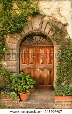 Vintage image of a Renaissance front door with plants - stock photo