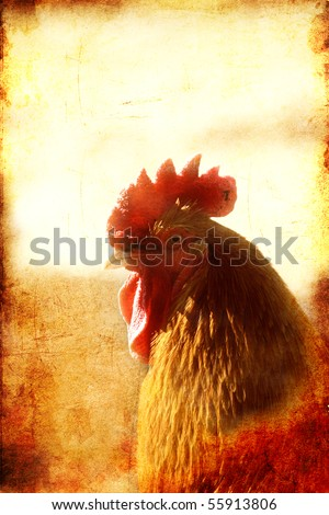 Vintage looking picture of Rooster with textured background - stock photo