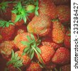 Vintage looking Strawberry fruit useful as a food background - stock photo