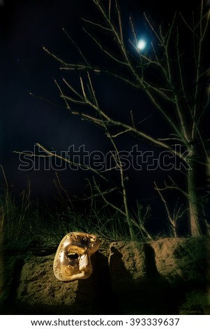 Vintage Mask at Night in Moonlight - stock photo