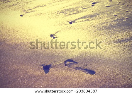 Vintage nature background of footprint on sand. - stock photo