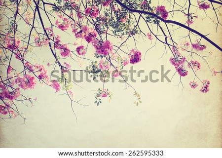 vintage nature background of  tree flower in summer ,paper art texture - stock photo
