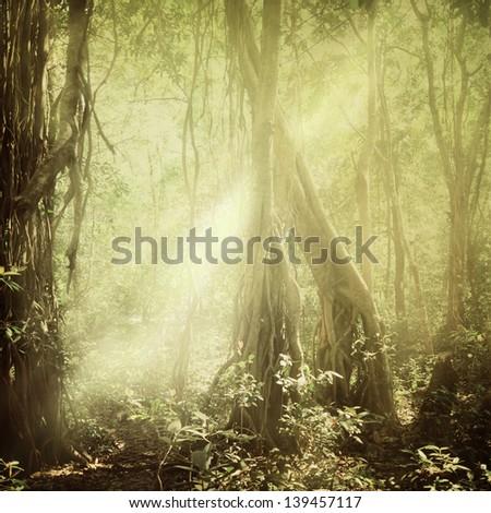Vintage nature background square style - stock photo
