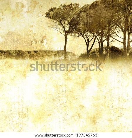 Vintage nature background with group of trees - stock photo