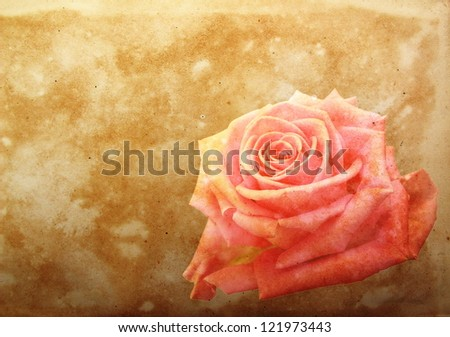 vintage paper with pink rose - stock photo