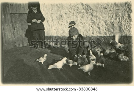 Vintage photo of a boy with doves (1938) - stock photo