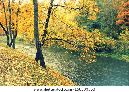 Vintage photo of autumn forest and river - stock photo
