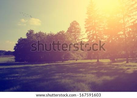 Vintage photo of beautiful landscape - stock photo