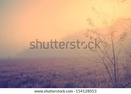 Vintage photo of cozy autumn scene - stock photo