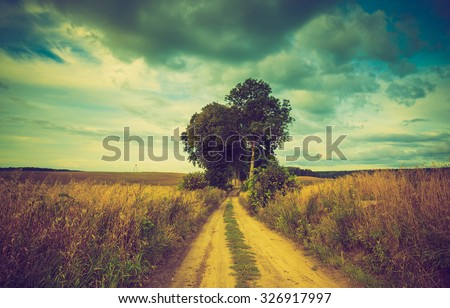 Vintage photo of polish field at autumn. Beautiful photo of landscape with vintage mood effect. - stock photo