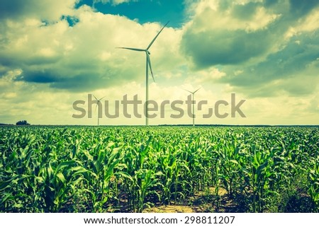 Vintage photo of windmills standing on corn field. Beautiful rural landscape with windmills. - stock photo