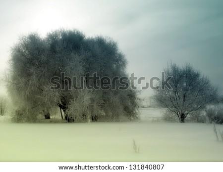Vintage Photo of Winter Trees Landscape - stock photo