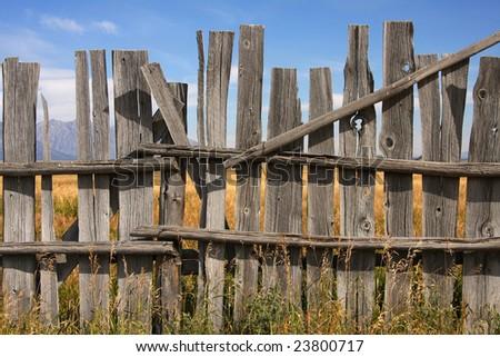 Vintage picket fence - stock photo
