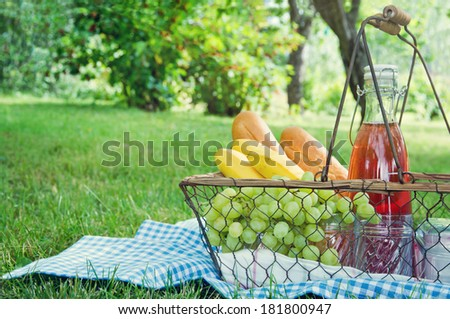 Vintage picnic basket with fruit, bread and juice on blue blanket in a green summer garden - stock photo