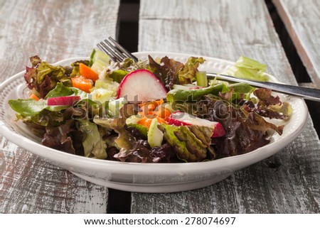 vintage plate with an Italian chopped green garden salad on an old barn wood table - organic, farm fresh - stock photo