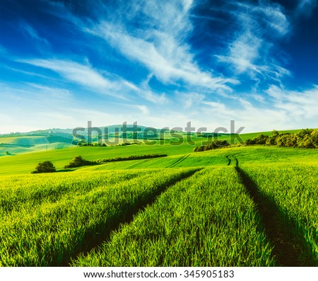 Vintage retro effect filtered hipster style image of Rolling summer landscape with green grass field under blue sky - stock photo