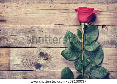 Vintage rose on old wooden background - stock photo