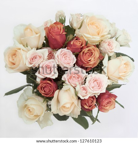 Vintage Roses in a bunch - stock photo