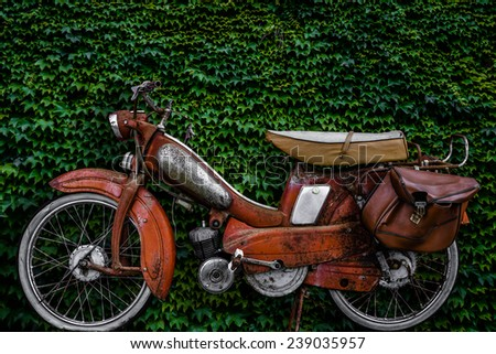 Vintage 60s French Moped Or Scooter With Pannier Bag And Flat Tyre Or Scooter Against An Ivy Background - stock photo