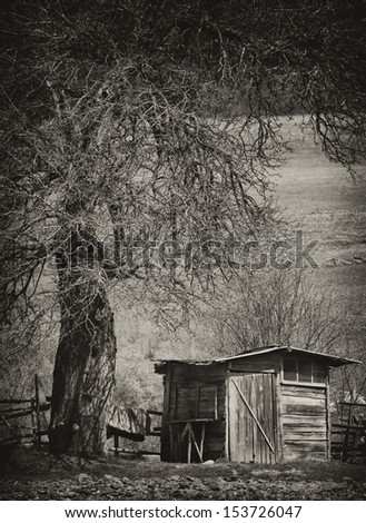 vintage spooky background with old creepy tree and wooden house  - stock photo