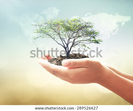 Vintage style. Human hands holding medium plant or big tree with soil on blurred world map of clouds over beautiful ocean or forest or desert sunset background. Ecology, World Environment Day concept. - stock photo