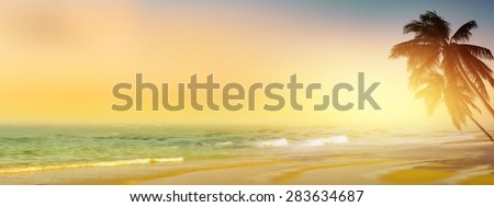 Vintage tropical beach background. Coconut palm tree at sunrise. Panoramic view. - stock photo